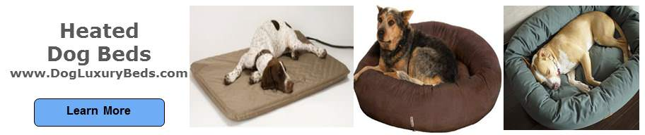 Heated dog beds provide restful sleep on cold days.