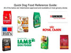 Best Dog Foods Veterinarian Rated Brands