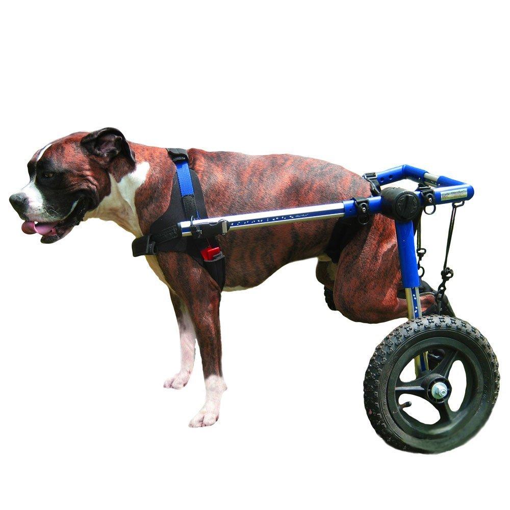 Dog Wheechairs