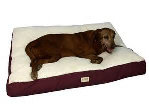 Armarkat Pet Bed Dog Lying On Bed