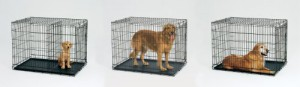 Midwest Life Stages Folding Metal Dog Crate Dogs In Crates