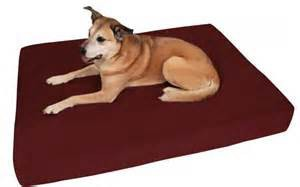 Large Orthopedic Dog Bed