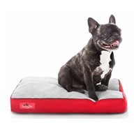 BRINDLE Soft Memory Foam Dog Bed with Removable Washable Cover - 46in x 28in - Red