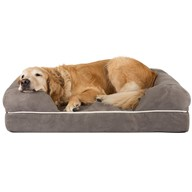 Friends Forever Large Dog Bed - Lounge Prestige Edition XL