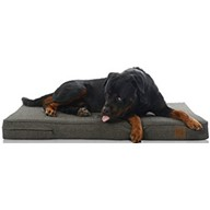 "Laifug Premium Memory Foam Orthopedic Extra Large Pet/Dog Bed (Black Coffee 46""x28""x4"")