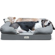 "PetFusion Ultimate Dog Bed & Lounge. (Large; 36x28x9.5""). Premium ed. w/ Solid 4"" Memory Foam"