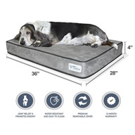 "PetFusion SerenityLounge Dog Bed (Large, 36x28x 4""). Premium Suede Cover w/ Solid 4"" Memory Foam."