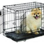 Midwest Life Stages Folding Metal Dog Crate Small