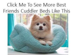 Best Friends Cuddler Dog Beds at Dog Luxury Beds .com