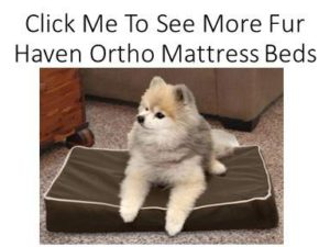 FurHaven Deluxe Orthopedic Dog Beds at Dog Luxury Beds .com