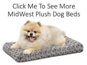 MidWest Homes For Pets Plush Dog Beds at Dog Luxury Beds .com