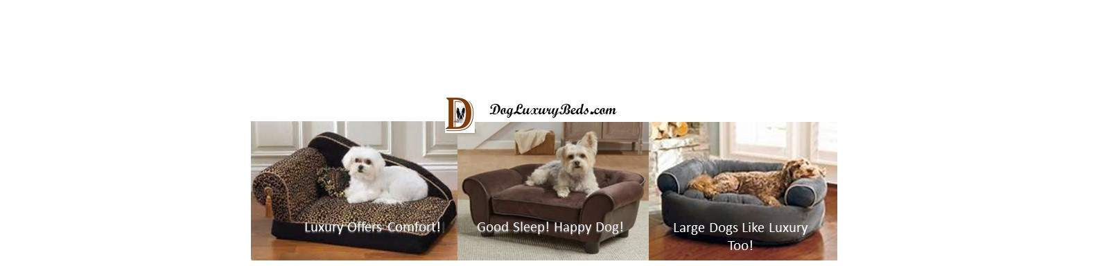 Dog Luxury Beds Give Your Dog A Restful Sleep