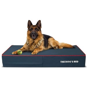 The Dogs Balls Orthopedic Rectangular Dog Bed