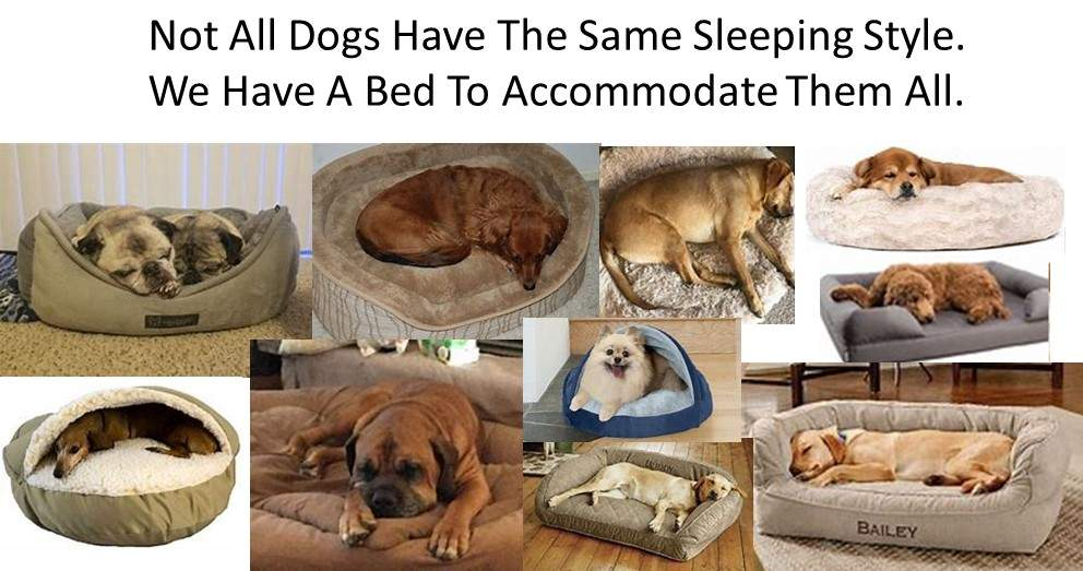 Dog Luxury Beds Dogs We have a Dog Luxury Bed For All Dog Sleeping Styles