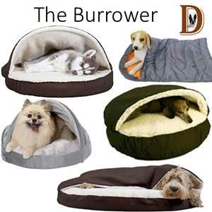 Dog Sleeping position The Burrower