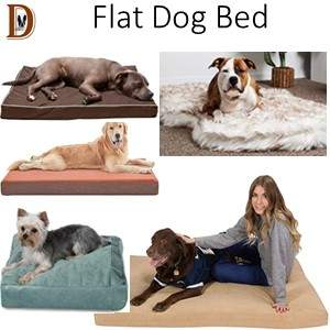 How To Buy A Dog Bed Flat Dog Bed Type