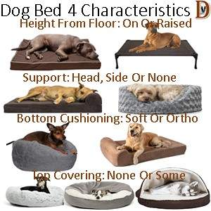 How To Buy A Dog Bed Four Characteristics Height Support Cushioning Cover