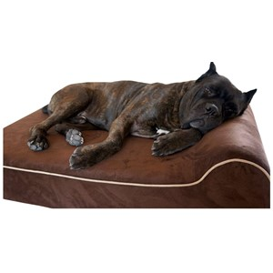 Bully Beds Orthopedic Bolster Dog Bed