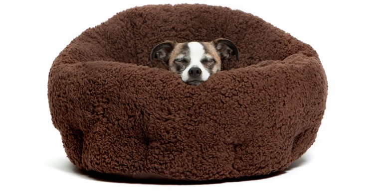 Deep Dish Cuddler Dog Bed