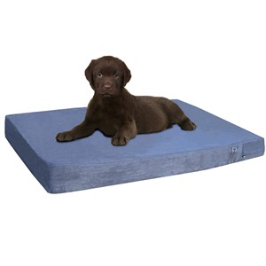Dogbed4less Rectangular Orthopedic Dog Bed Small Dogs