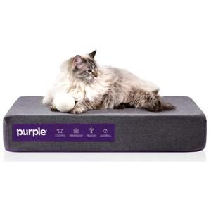 Purple Rectangular Orthopedic Dog Bed Small Dogs
