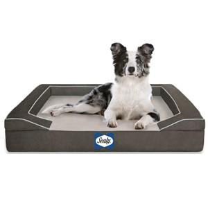 Sealy Bolster Dog Bed Medium Dogs