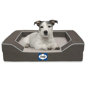 Sealy Bolster Orthopedic Dog Bed Small Dogs