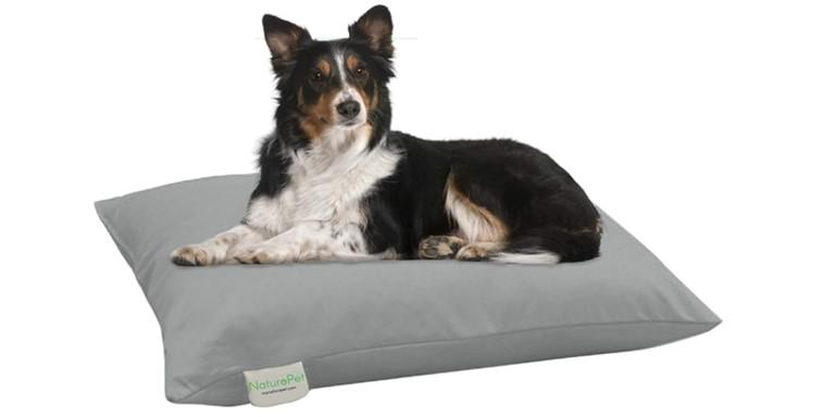 NaturoPet Organic Dog Bed Header